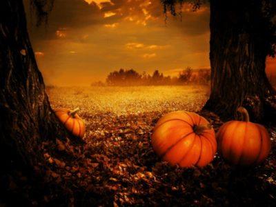 Halloween, Hormones & Pumpkins